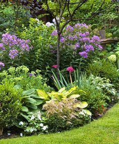 Ob Sonne, Schatten, Trockener Oder Feuchter Boden ➥ Hier Findest Sie  Beetideen Für Einen Blühenden Garten   Mit Ausführlichen Pflanzplänen Und  ...