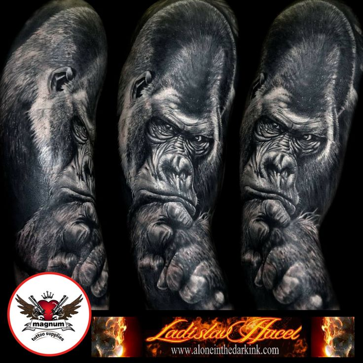Black and grey piece by Ladislav Hacel using #magnumtattoosupplies  #blackandgreyallday #gorilla #ink #tattoo