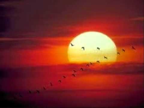 ▶ La Montaña de Roberto Carlos (Letra y Audio) - YouTube