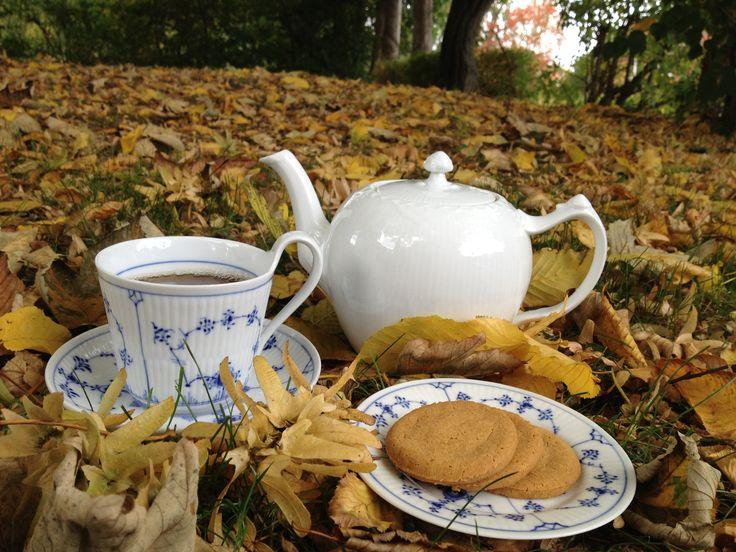 Autumn tea in the free! ;-)