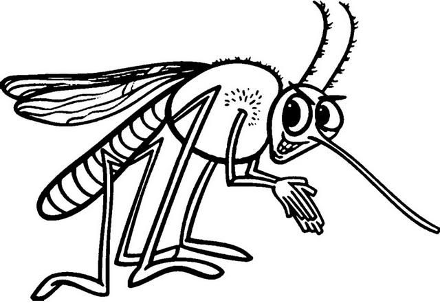 Funny Mosquito Cartoon Clipart Drawing Page Cartoon Clip Art Mosquito Drawing Clip Art