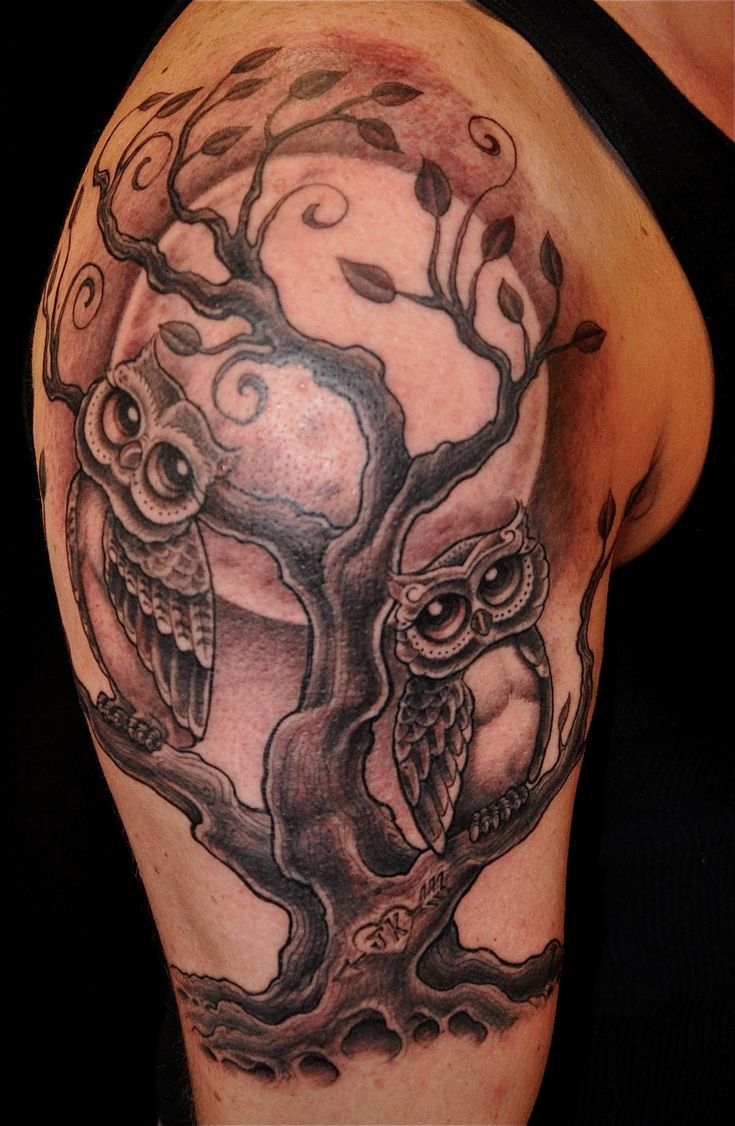 Owls In Tree Tattoo By Corey Miller