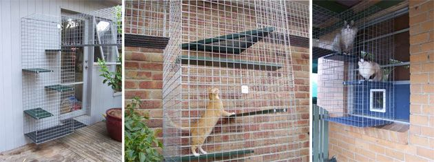 catio a collection of animals and pets ideas to try