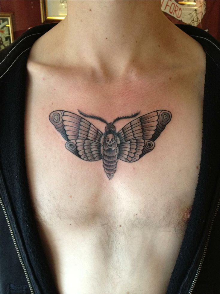 Skull In Moth Tattoo On Man Chest