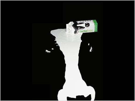 Δεν...χωνεύεις κι εσύ το γάλα; Μήπως ανήκεις στο 70% του παγκόσμιου πληθυσμού που πάσχει από δυσανεξία στην λακτόζη; Υπάρχει λύση.    Της γεωπόνου Ελένης Παναγιώτου.
