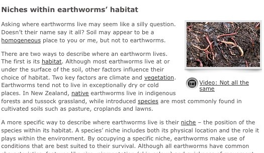 5.Read the article Niches within earthworms' habitat. Discuss how living in a niche affects an earthworm's location in the soil profile, burrowing behaviour, pigmentation, muscle strength and diet.