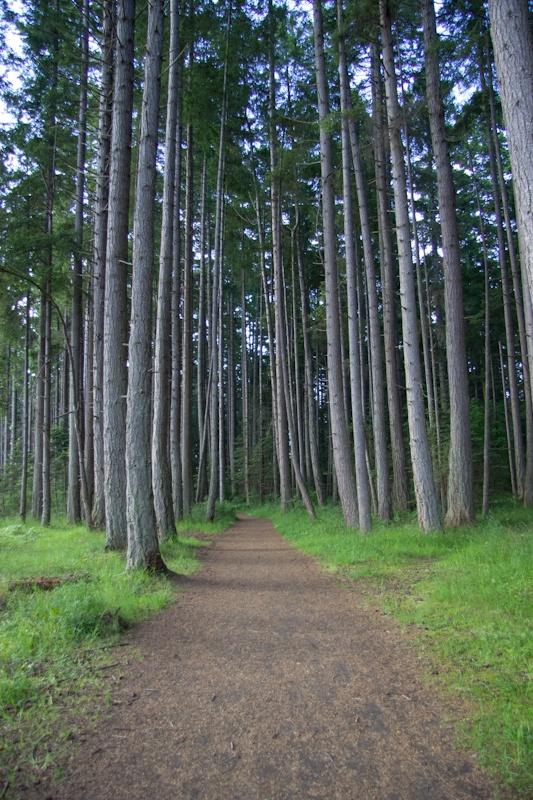 Rathtrevor Provincial Park