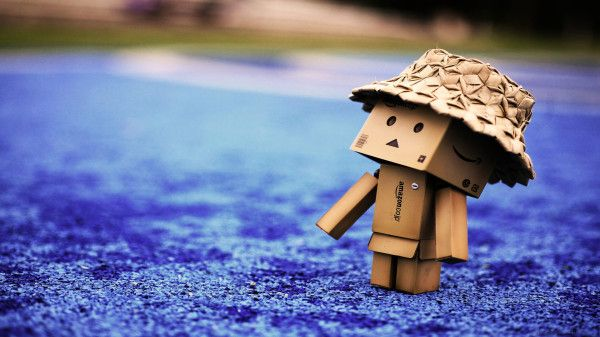 Danbo Picture