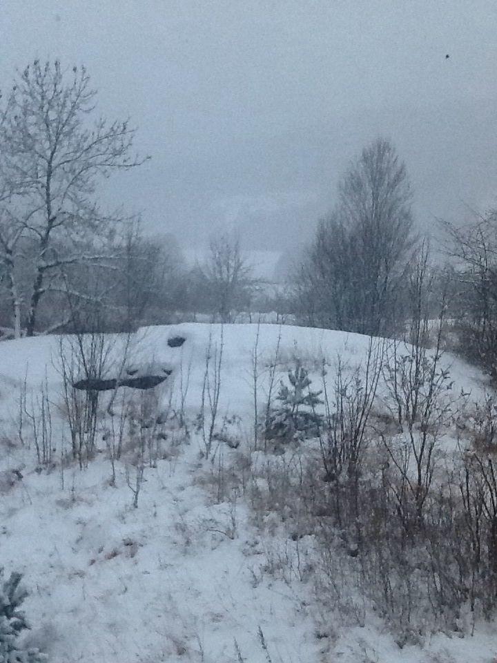 """Den """"frodige hagen"""" på vinteren."""