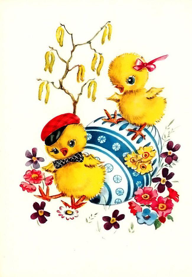 Цыпленок открытка, для