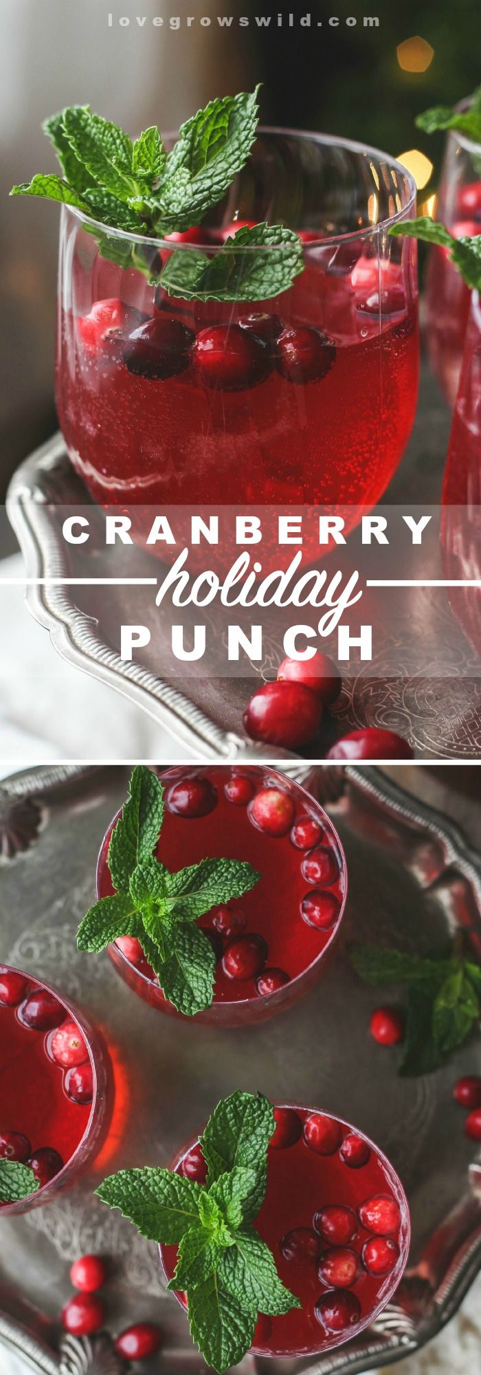 This non-alcoholic Cranberry Punch is a MUST for your next holiday party! Just don't forget to add this special garnish... details at LoveGrowsWild.com