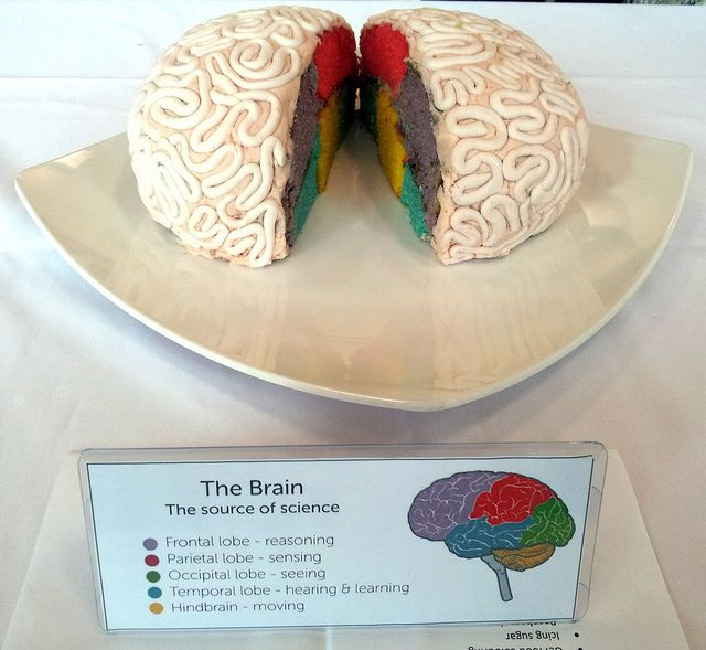 Entry 4: The Brain A close second in our joint public/official judges vote! Definitely the winner as judged by the internet audience.