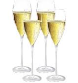 Champagne, more champagne, and a classic champagne flute... like these Luigi Bormioli Magnifico's.