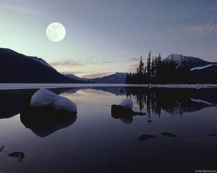 блог Marine Bio, коралловая вода, coral water, moon reflection