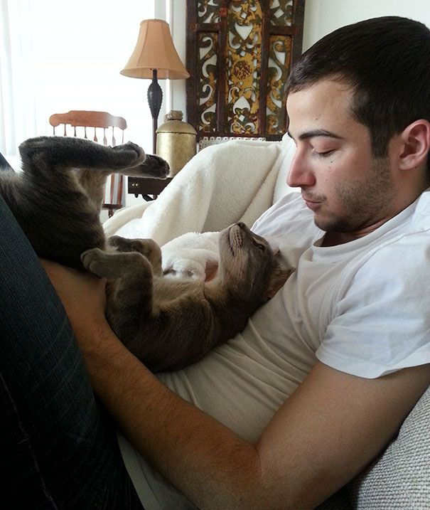 A Seriously Cute Moment Between My Boyfriend And Cat