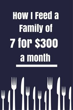 Meal Plan, including breakfast, lunch, dinner, snacks, and beverages to feed my family of 7 for $300 a month