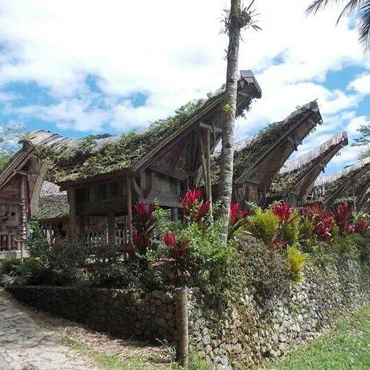 Rumah adat Toraja, Tana Toraja, Indonesia
