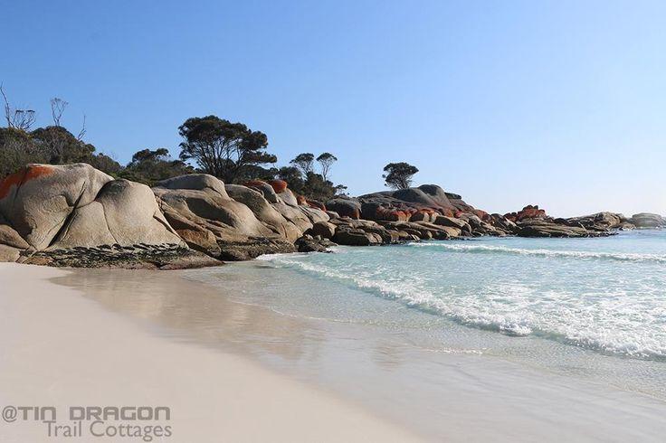 Make Binnalong Bay your reason to visit #northeasttasmania  90min from #TinDTC #discovertasmania