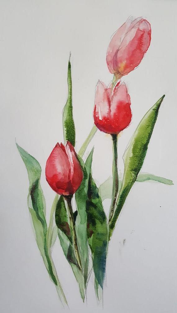 Tulips Original Watercolor Painting Watercolor Flowers