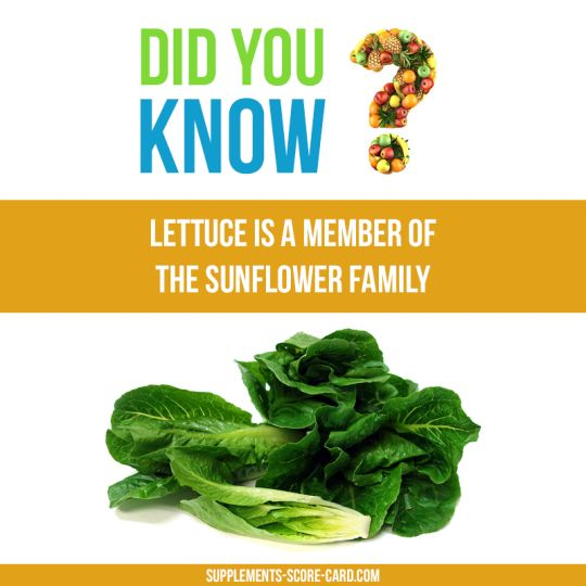 Food Facts. Did You Know?