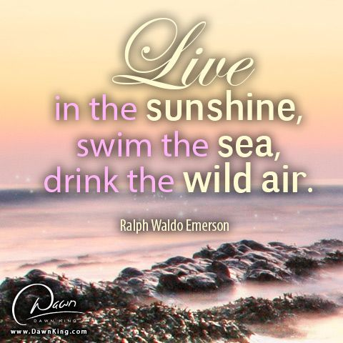 """Live in the sunshine, swim the sea, drink the wild air."" Ralph Waldo Emerson www.dawnking.com"