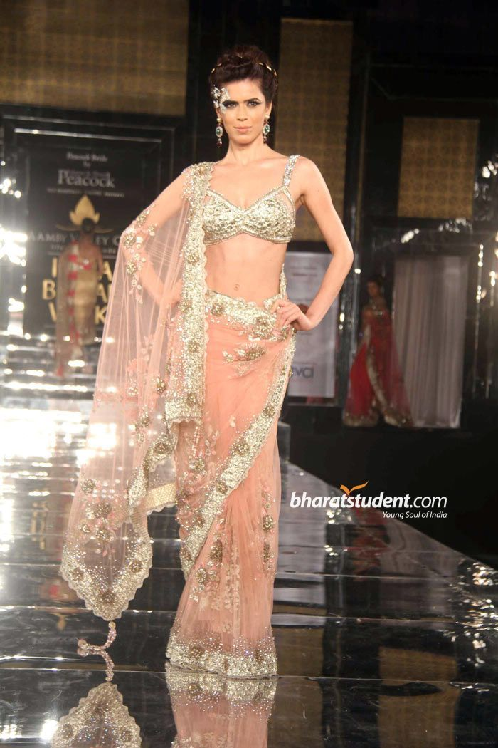 beautifully embroidered nude pink #Saree by Shane & Falguni Peacock http://falgunishanepeacock.com/