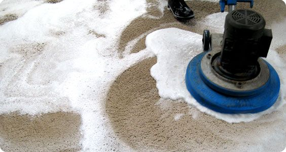If you want to hire a professional and a most reliable company for getting the services of Carpet Cleaning Montauk, then you should concern with Frank Hanna's International Cleaning Co. This company will not only provide the highest quality carpet cleaning through their expertise, but also will charge very reasonable and discounted amount from their clients.