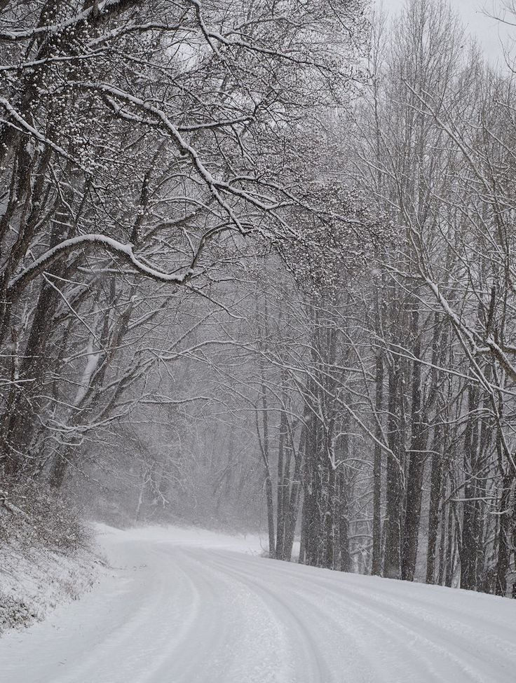 Blue Ridge Parkway in the snow - north of Asheville, North Carolina