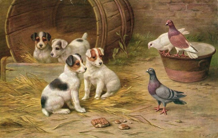 puppy dogs in barrel with doves cute artist signed E. Hunt postcard