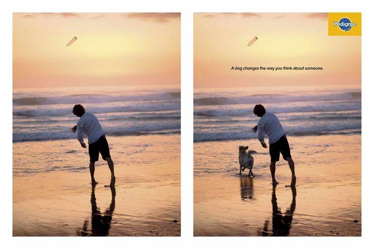 """""""Un perro cambia la forma de pensar en alguien"""" Agencia: AlmapBBDO, Brazil"""