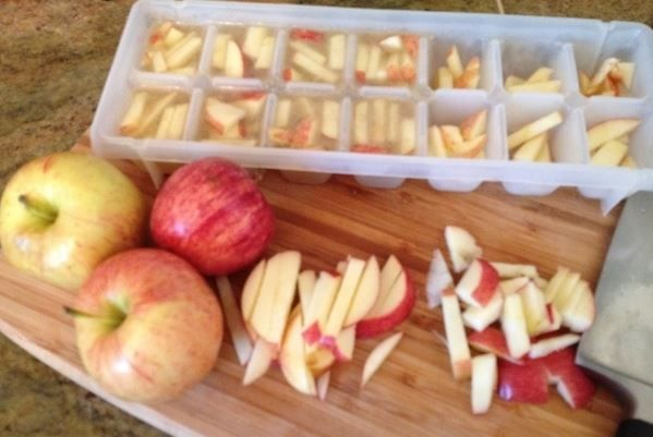 An inexpensive and easy summer treat for dogs: Cut up apples in chicken broth and freeze in an ice cube tray.
