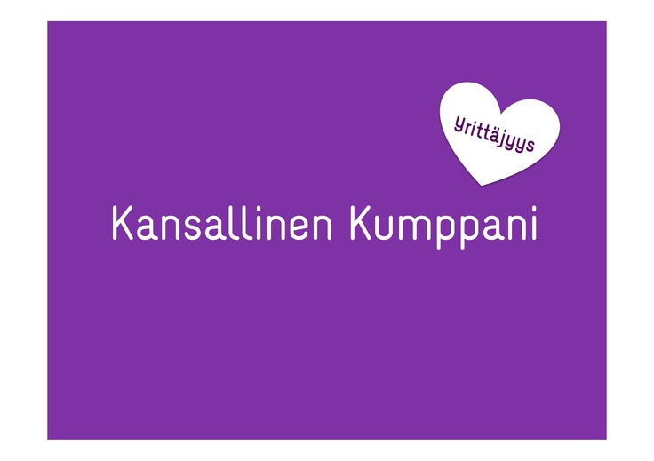 Kansallinen kumppani - Sanna Jylänki