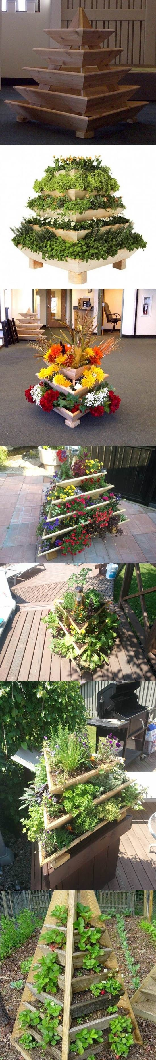 Creative Idea of Home Gardening - Triolife Plant Pyramid.
