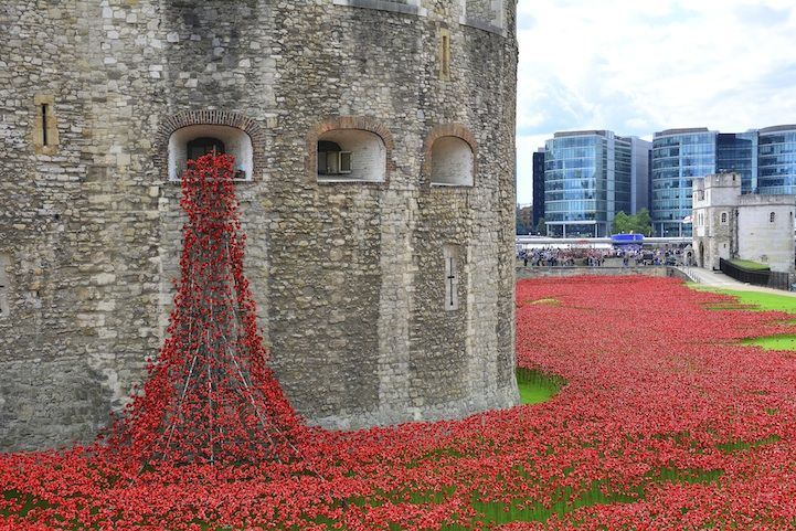 Stunning Installation of 888,246 Ceramic Poppies Honors British Lives Lost in WWI. By the time Blood Swept Lands and Seas of Red, is done, over 4 million people will have seen it. Surrounding the Tower of London the installation covers 16 acres. Ninety tons of steel was used to create the stems of the poppies & the structures which made the red flowers look like they were floating over the moat or pouring out of one of the tower's windows.
