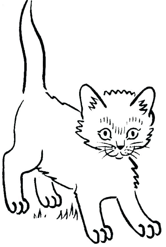 Cute Kitten Coloring Pages Idea Free Coloring Sheets Kitten Coloring Book Animal Coloring Pages Family Coloring Pages