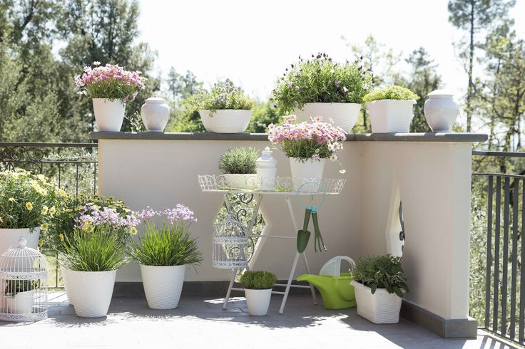 Le 25 migliori idee su fioriere di legno su pinterest for Portavasi balcone