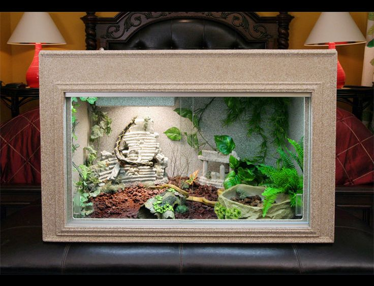 Iguana Cage - Bearded Dragon Cage - Plastic Cage - Reptile Supplies - Reptile Accessories - Reptiles - Snake Cage - Animal Cages - cage - cages - Plastic cages