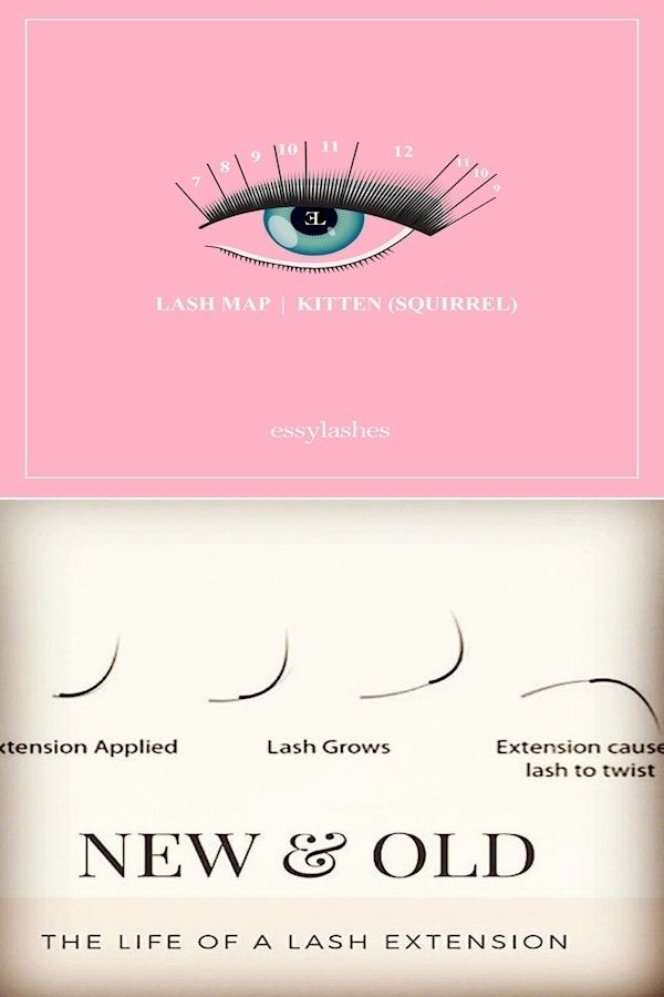 Eyelash Makeup | What Are The Best Lash Extensions ...
