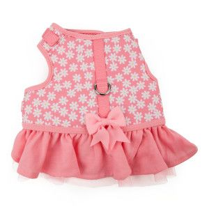 Martha Stewart Pets® Floral Dress Harness | Harnesses | PetSmart