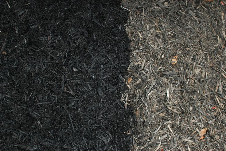 black.mulch.before&after