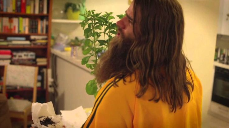 STEVIA PLANT PART 1 #TheNelsonTwins #Comedy #Comedians