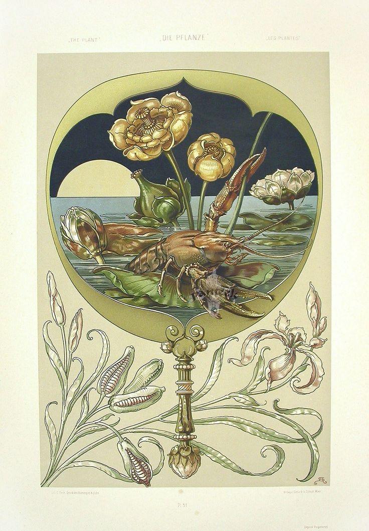 Anton Seder (1850-1916?) — Lobster and Water Lilies   (1100x1582)