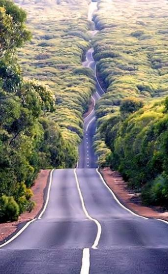 Planning an Aussie road trip? | AUS | Australia | driving | on the road | beautiful roads | dream roads