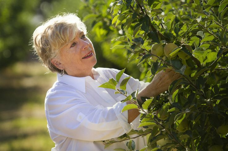 Maggie Beer, a Barossa Food Tradition
