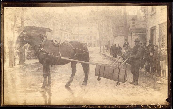 Gratte à neige, rue Dupont, vers 1895.   On nettoyait les trottoirs avec ce cheval et cette gratte à neige.  On est à Québec.