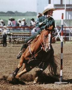 For pole bending, a horse must be really athletic, although great basic speed is an asset as well.  This timed event is more demanding than others. This is a slalom-like course around six poles, performed at a gallop. A horse without an easy and natural flying lead change will hardly ever be able to do well in this event, while in barrel racing, for instance, a horse can scrape around the barrels and crossfire and still do well.