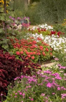 Denver Botanical Gardens #wonderful: Gardens Fantastic, Fantastic Pin, Gardens Clever, English Gardens, Beauty Place, Denver Botanical, Flower Gardens, Random Pin, Botanical Gardens