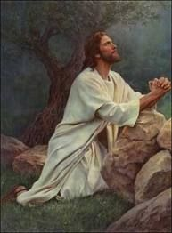 """""""And now I am no more in the world, but these are in the world, and I come to thee. Holy Father, keep through thine own name those whom thou hast given me, that they may be one, as we are."""" John 17:11 KJV"""