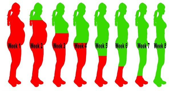 How To Drink Away Your Excess Weight Away In 8 Weeks HEROTIPS.ORG