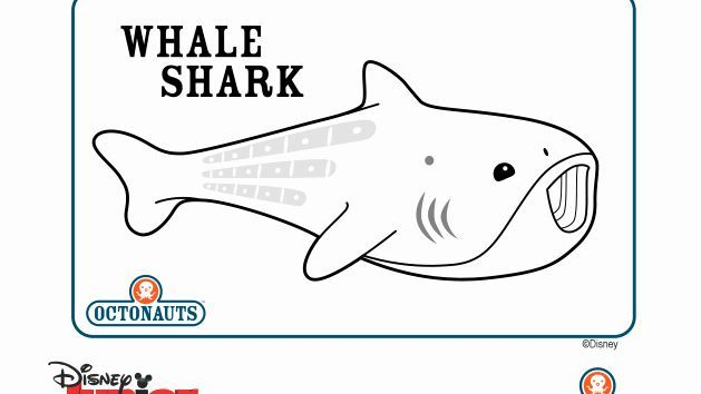 Whale Shark Coloring Page Fresh Disney Junior Lots Of Official Octonauts Colouring Pages In 2020 Octonauts Shark Col In 2021 Shark Coloring Pages Whale Shark Octonauts